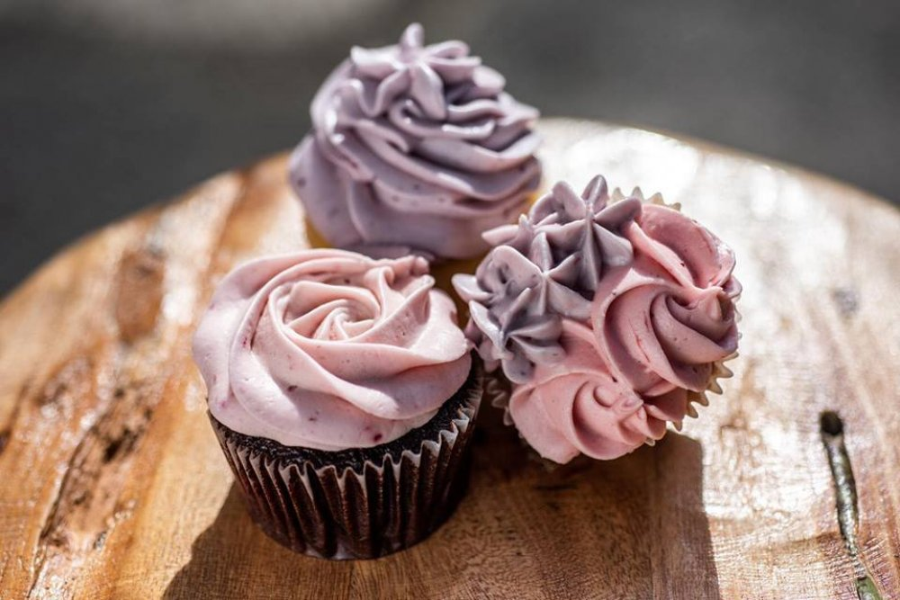 The Cupcake Shop cover image