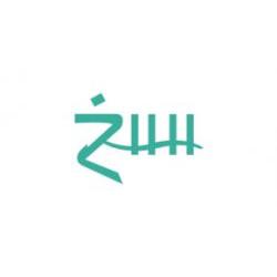 ZHH Pizza
