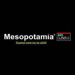 Mesopotamia Piata 700